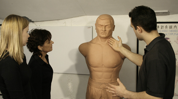 Frequently Asked Questions about the anatomy and physiology of Wing Chun often  ue teaching aids like the 'Bob' dummy.